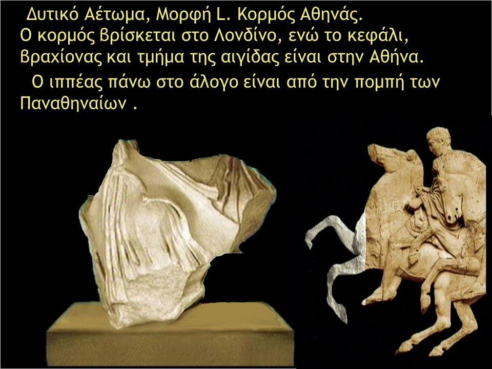 Δυτικό Αέτωμα, Μορφή L. Κορμός Αθηνάς. Ο κορμός βρίσκεται στο Λονδίνο, ενώ το κεφάλι, βραχίονας και τμήμα της αιγίδας είναι στην Αθήνα. Ο ιππέας πάνω
