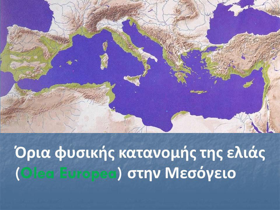 Όρια φυσικής κατανομής της ελιάς (Olea Europea) στην Μεσόγειο