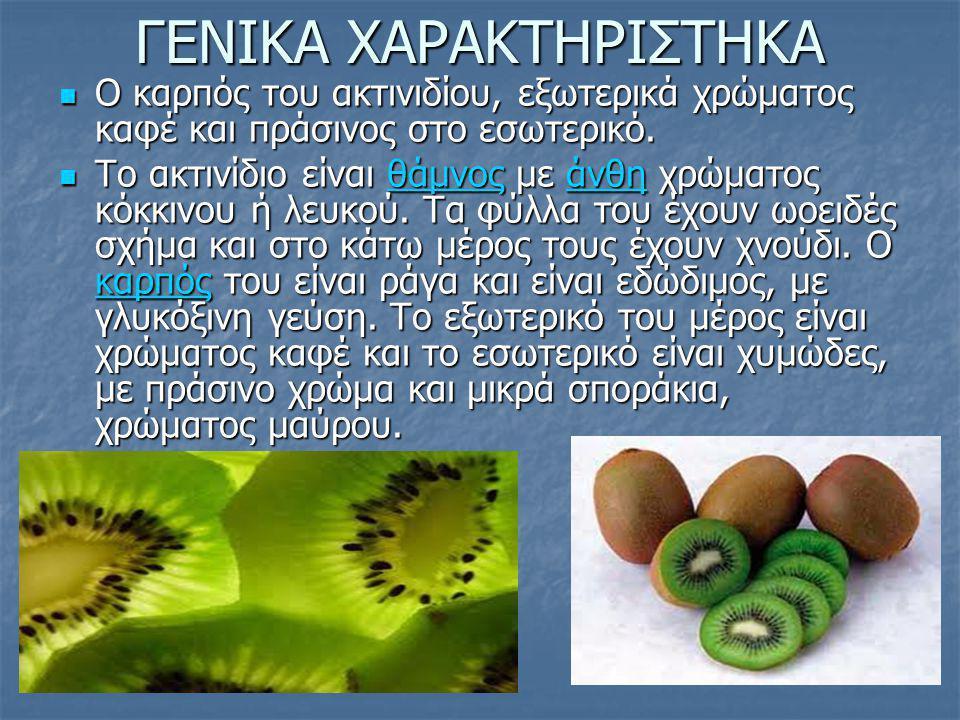 ΓΕΝΙΚΑ ΧΑΡΑΚΤΗΡΙΣΤΗΚΑ Ο καρπός του ακτινιδίου, εξωτερικά χρώματος καφέ και πράσινος στο εσωτερικό. Ο καρπός του ακτινιδίου, εξωτερικά χρώματος καφέ κα