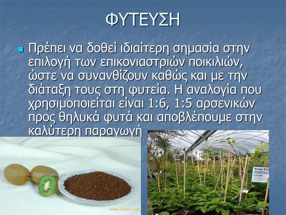 ΦΥΤΕΥΣΗ Πρέπει να δοθεί ιδιαίτερη σημασία στην επιλογή των επικονιαστριών ποικιλιών, ώστε να συνανθίζουν καθώς και με την διάταξη τους στη φυτεία. Η α