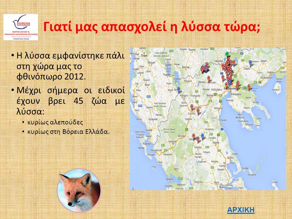 Γιατί μας απασχολεί η λύσσα τώρα; Η λύσσα εμφανίστηκε πάλι στη χώρα μας το φθινόπωρο 2012.