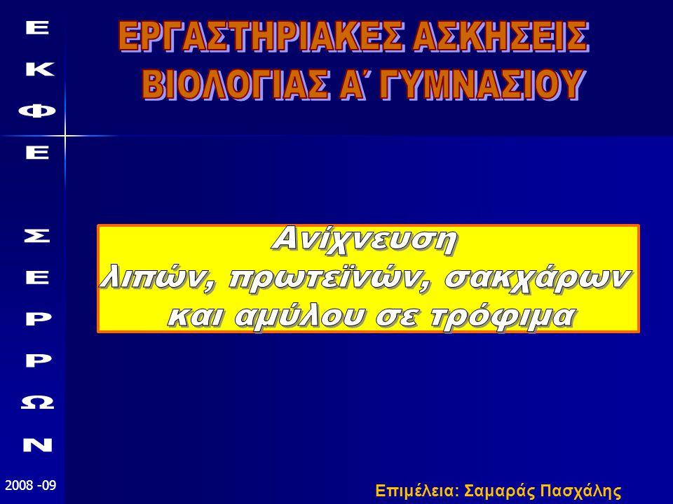ΕΚΦΕ ΣΕΡΡΩΝ 2008-09 δ.