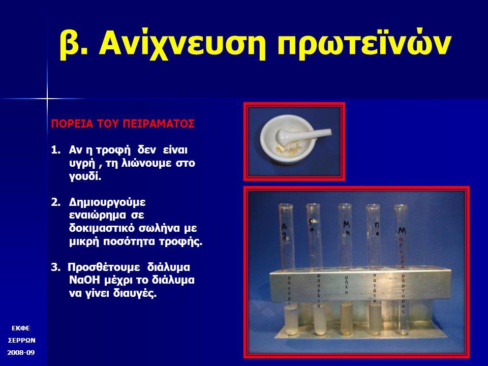 ΕΚΦΕ ΣΕΡΡΩΝ 2008-09 β.