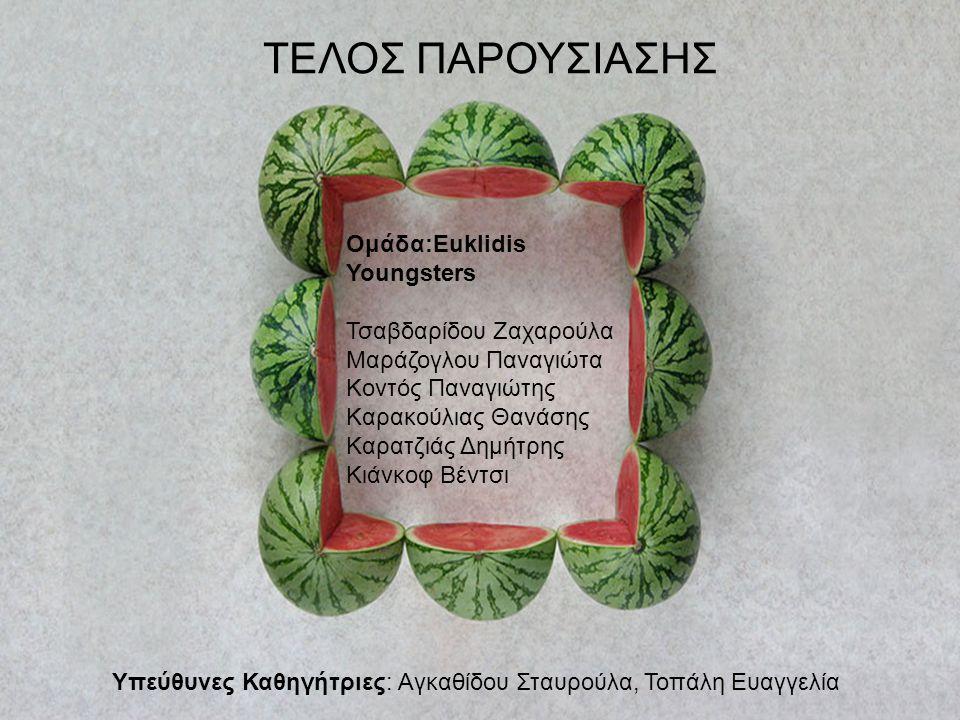 Ομάδα:Euklidis Youngsters Τσαβδαρίδου Ζαχαρούλα Μαράζογλου Παναγιώτα Κοντός Παναγιώτης Καρακούλιας Θανάσης Καρατζιάς Δημήτρης Κιάνκοφ Βέντσι Υπεύθυνες Καθηγήτριες: Αγκαθίδου Σταυρούλα, Τοπάλη Ευαγγελία ΤΕΛΟΣ ΠΑΡΟΥΣΙΑΣΗΣ