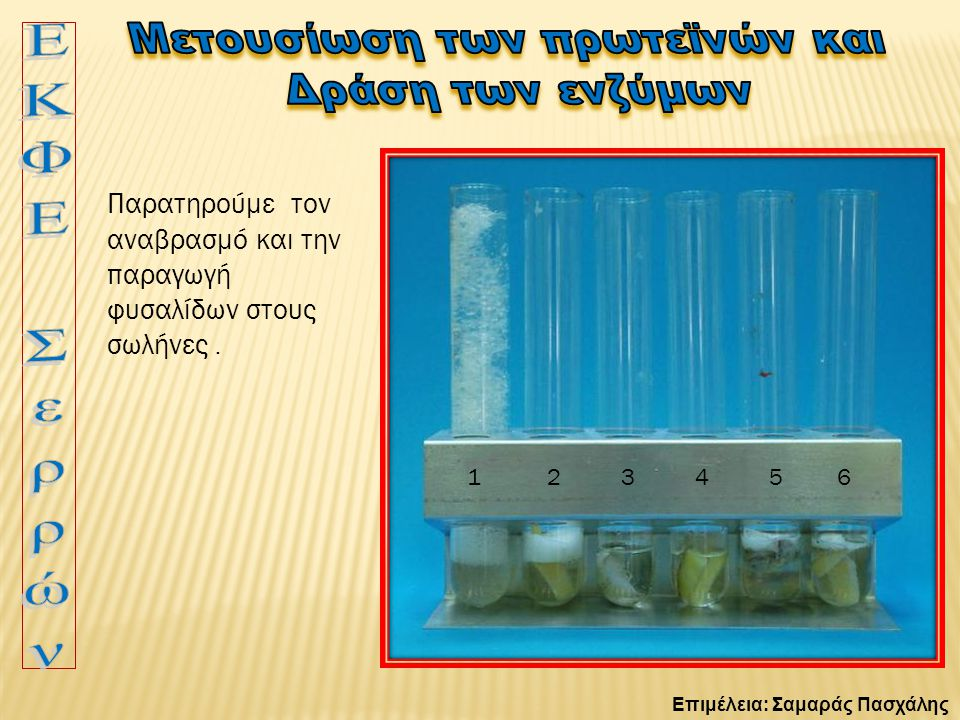 Επιμέλεια: Σαμαράς Πασχάλης 1 2 3 4 5 6 Παρατηρούμε τον αναβρασμό και την παραγωγή φυσαλίδων στους σωλήνες.