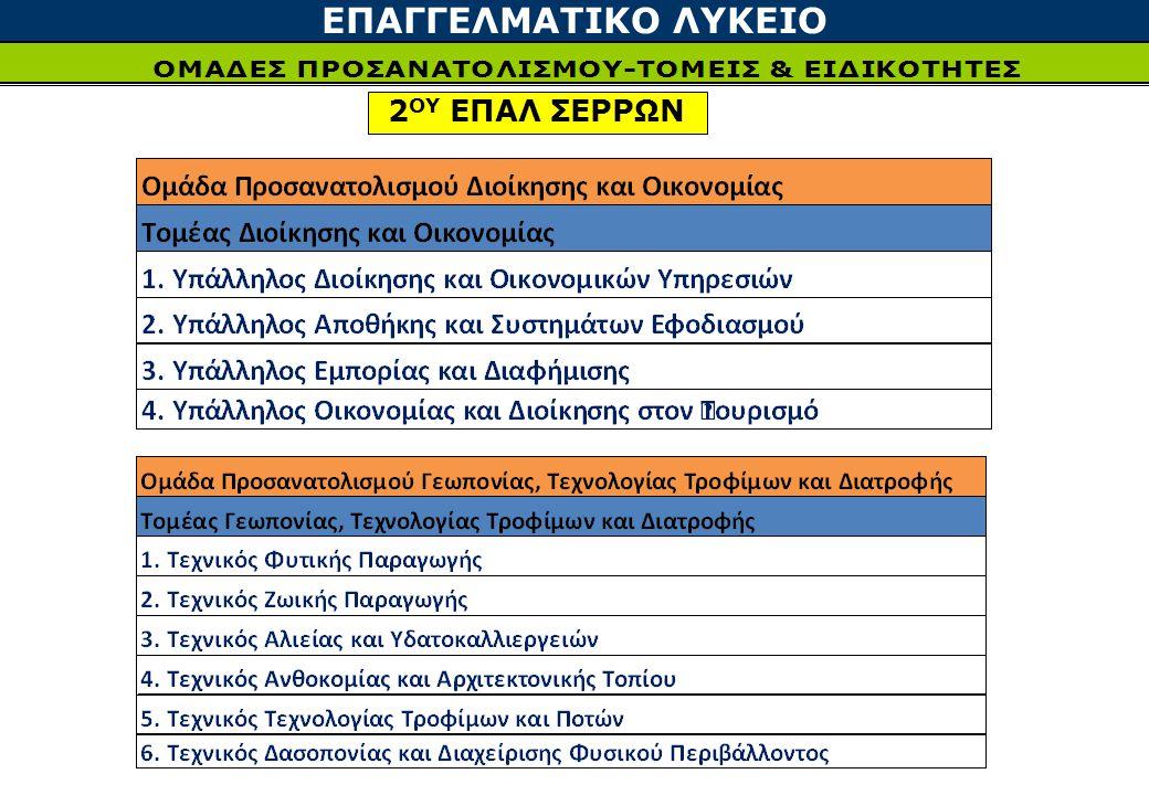 ΕΠΑΓΓΕΛΜΑΤΙΚΟ ΛΥΚΕΙΟ 2 ΟΥ ΕΠΑΛ ΣΕΡΡΩΝ