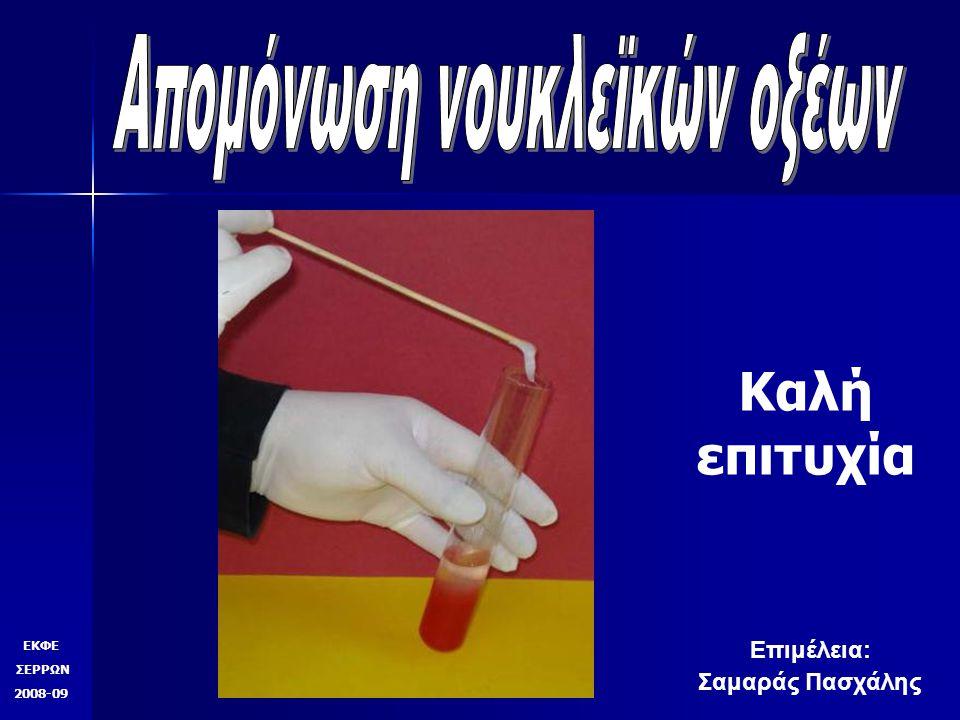 Καλή επιτυχία ΕΚΦΕ ΣΕΡΡΩΝ 2008-09 Επιμέλεια: Σαμαράς Πασχάλης