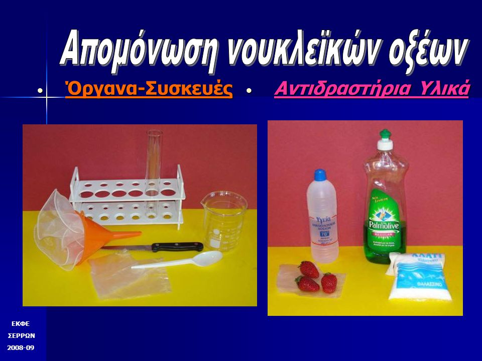 Απομόνωση νουκλεϊκών οξέων Πολτοποιούμε 2-3 φράουλες σε κλειστό σακουλάκι τροφίμων με λίγο νερό (50ml).