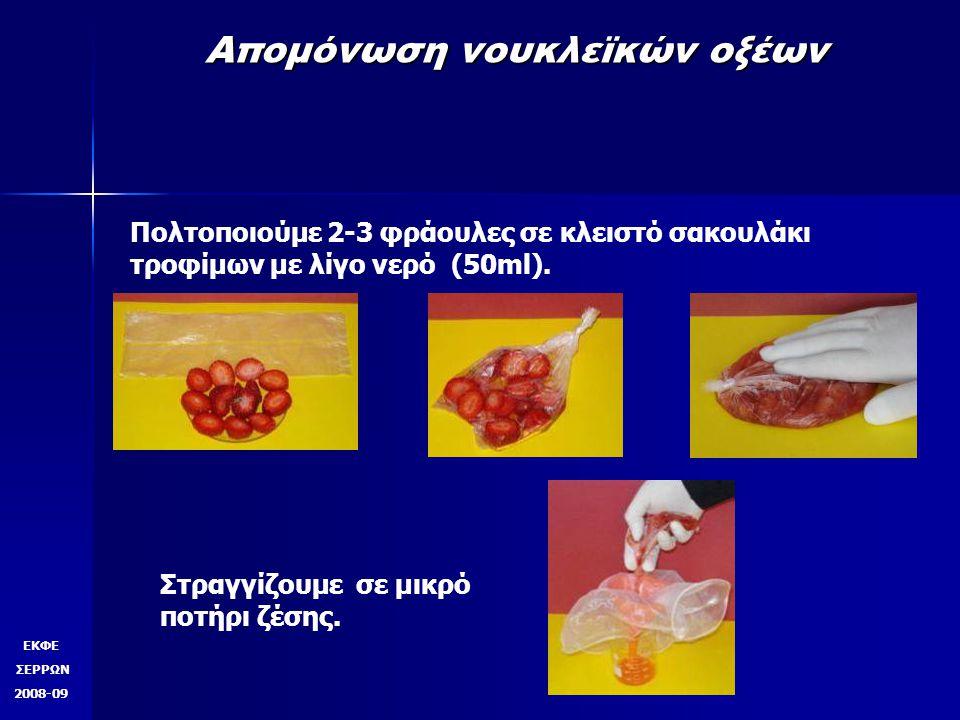 Απομόνωση νουκλεϊκών οξέων Πολτοποιούμε 2-3 φράουλες σε κλειστό σακουλάκι τροφίμων με λίγο νερό (50ml). Στραγγίζουμε σε μικρό ποτήρι ζέσης. ΕΚΦΕ ΣΕΡΡΩ