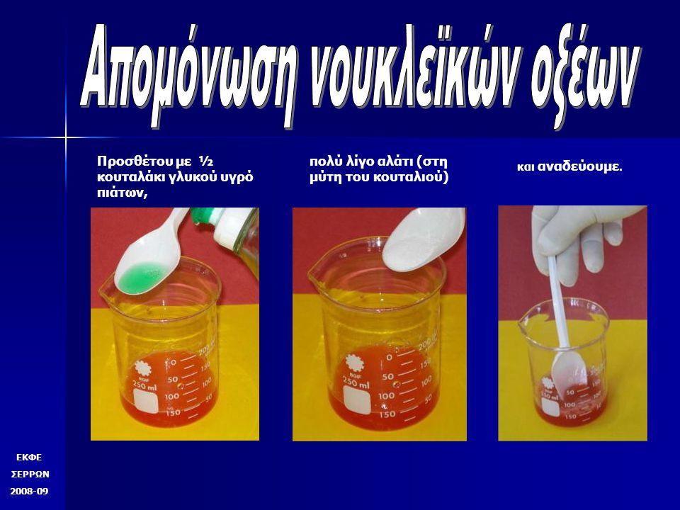 Προσθέτου με ½ κουταλάκι γλυκού υγρό πιάτων, πολύ λίγο αλάτι (στη μύτη του κουταλιού) και αναδεύουμε. ΕΚΦΕ ΣΕΡΡΩΝ 2008-09