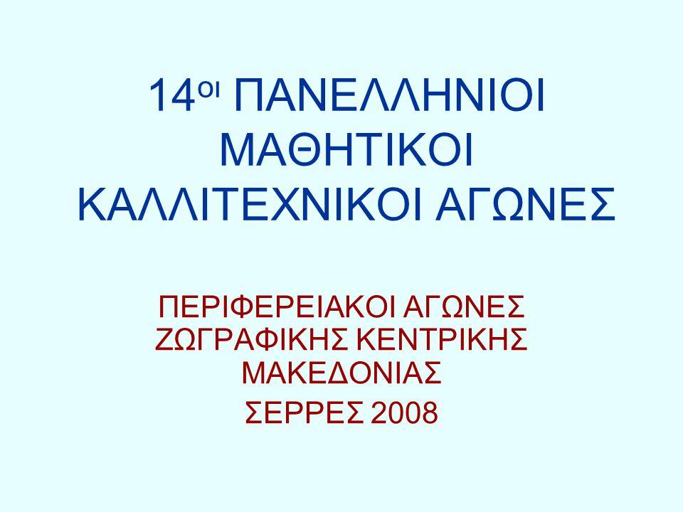 14 οι ΠΑΝΕΛΛΗΝΙΟΙ ΜΑΘΗΤΙΚΟΙ ΚΑΛΛΙΤΕΧΝΙΚΟΙ ΑΓΩΝΕΣ ΠΕΡΙΦΕΡΕΙΑΚΟΙ ΑΓΩΝΕΣ ΖΩΓΡΑΦΙΚΗΣ ΚΕΝΤΡΙΚΗΣ ΜΑΚΕΔΟΝΙΑΣ ΣΕΡΡΕΣ 2008