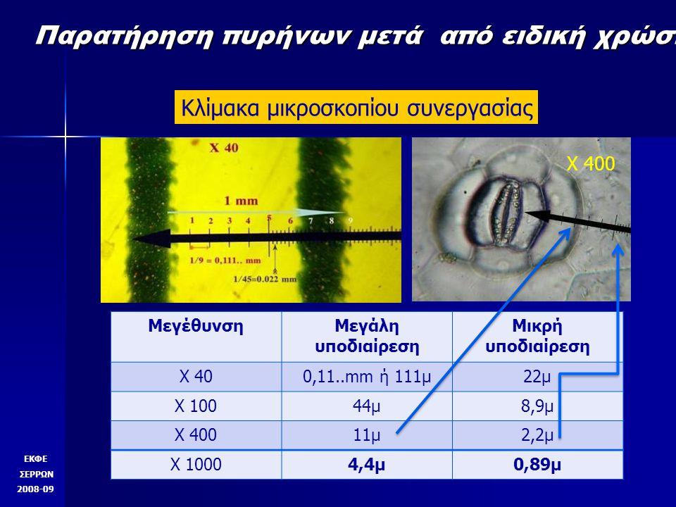 X 100 X 400 ΕΚΦΕ ΣΕΡΡΩΝ 2008-09