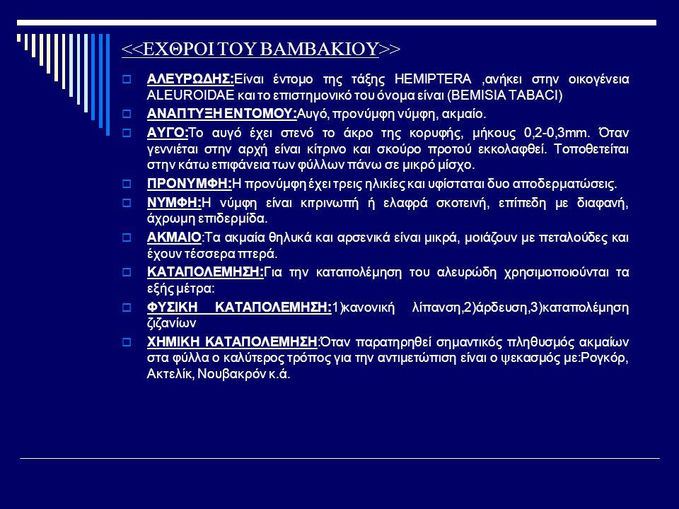 >  ΑΛΕΥΡΩΔΗΣ:Είναι έντομο της τάξης HEMIPTERA,ανήκει στην οικογένεια ALEUROIDAE και το επιστημονικό του όνομα είναι (BEMISIA TABACI)  ΑΝΑΠΤΥΞΗ ΕΝΤΟΜ