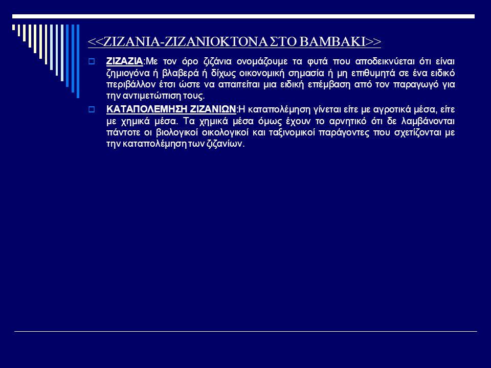 >  ΖΙΖΑΖΙΑ:Mε τον όρο ζιζάνια ονομάζουμε τα φυτά που αποδεικνύεται ότι είναι ζημιογόνα ή βλαβερά ή δίχως οικονομική σημασία ή μη επιθυμητά σε ένα ειδ
