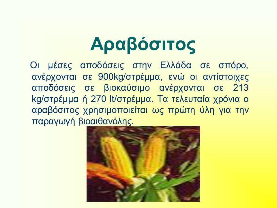 Αραβόσιτος Οι μέσες αποδόσεις στην Ελλάδα σε σπόρο, ανέρχονται σε 900kg/στρέμμα, ενώ οι αντίστοιχες αποδόσεις σε βιοκαύσιμο ανέρχονται σε 213 kg/στρέμμα ή 270 lt/στρέμμα.