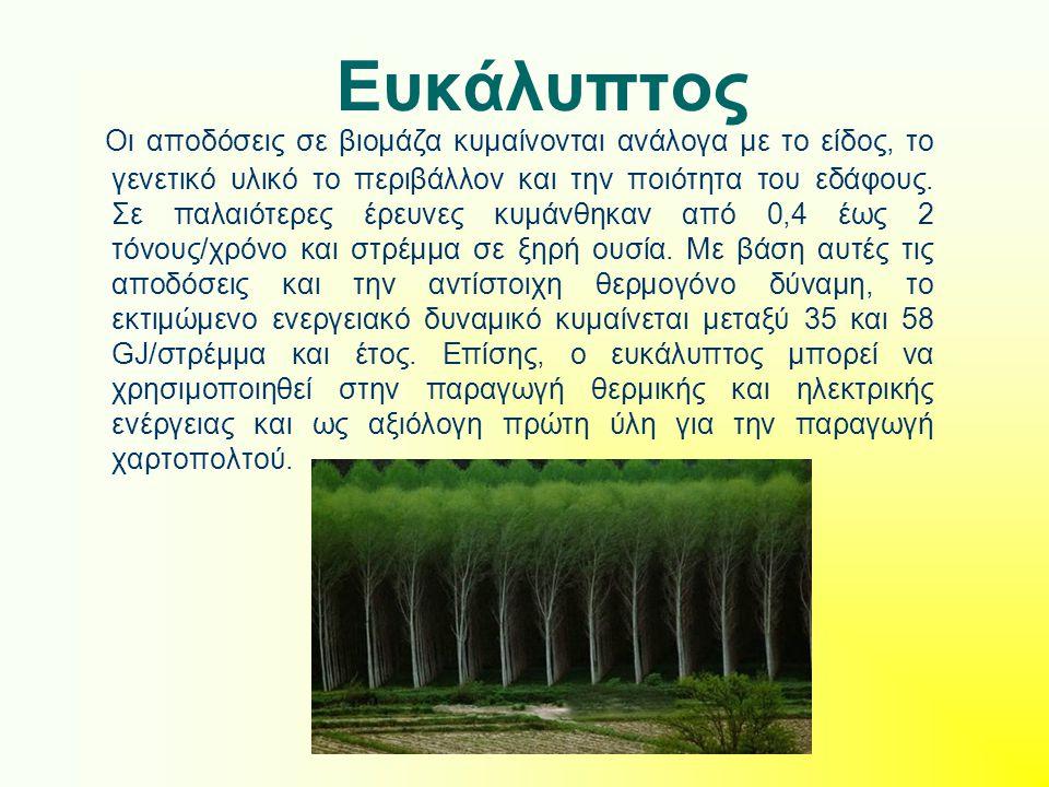 Ευκάλυπτος Οι αποδόσεις σε βιομάζα κυμαίνονται ανάλογα με το είδος, το γενετικό υλικό το περιβάλλον και την ποιότητα του εδάφους.