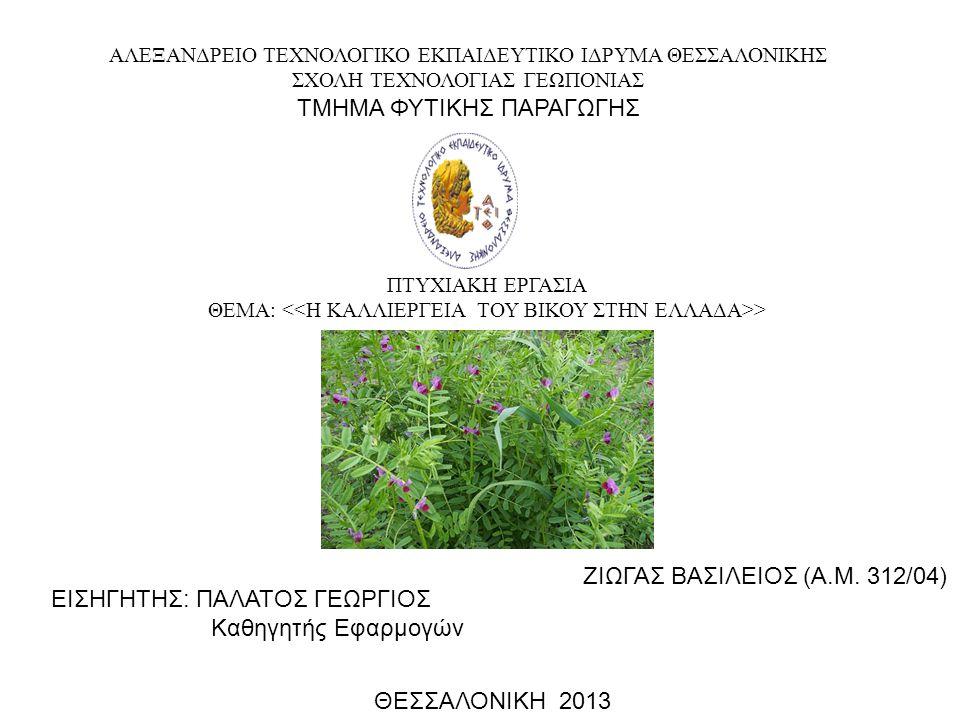 ΖΙΖΑΝΙΑ ΤΟΥ ΒΙΚΟΥ Κυρίως επηρεάζουν τις σποροκαλλιέργειες όπου προκαλούν απώλειες σε σπόρο Οι δυσμενείς επιδράσεις στις σανοδοτικές καλλιέργειες είναι περιορισμένες διότι τα ζώα τρέφονται και με ζιζάνια Τα κυριότερα ζιζάνια που πλήττουν τον βίκο είναι το βλήτο, ο ζωχός, η κόνυζα, η κύπερη, το καπνόχορτο, η παπαρούνα και η βερόνικα Αποφεύγονται με την σωστή κατεργασία του εδάφους