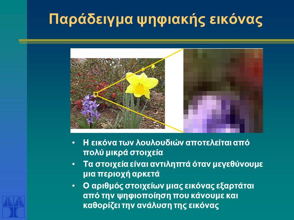 Παράδειγμα ψηφιακής εικόνας Η εικόνα των λουλουδιών αποτελείται από πολύ μικρά στοιχεία Τα στοιχεία είναι αντιληπτά όταν μεγεθύνουμε μια περιοχή αρκετά Ο αριθμός στοιχείων μιας εικόνας εξαρτάται από την ψηφιοποίηση που κάνουμε και καθορίζει την ανάλυση της εικόνας
