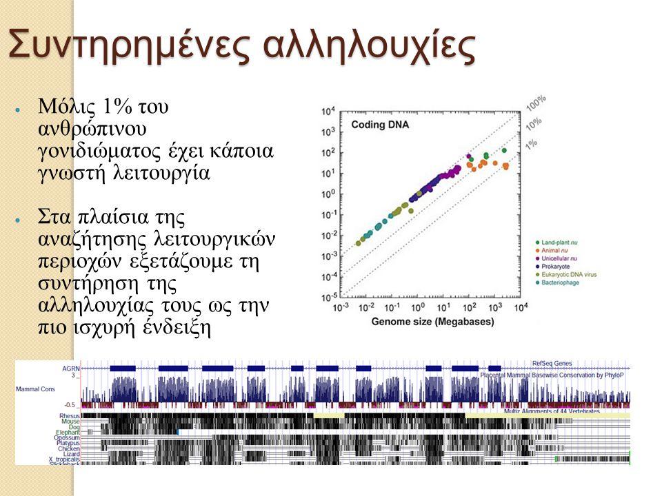 Συντηρημένες αλληλουχίες ● Μόλις 1% του ανθρώπινου γονιδιώματος έχει κάποια γνωστή λειτουργία ● Στα πλαίσια της αναζήτησης λειτουργικών περιοχών εξετά