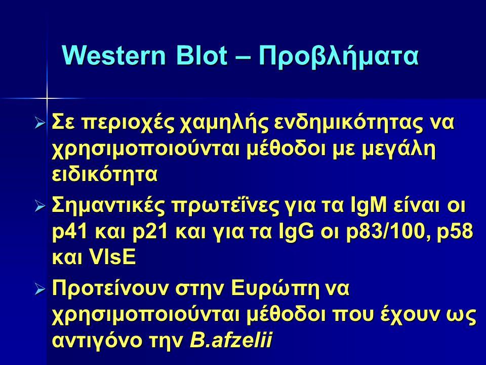 Western Blot – Προβλήματα  Σε περιοχές χαμηλής ενδημικότητας να χρησιμοποιούνται μέθοδοι με μεγάλη ειδικότητα  Σημαντικές πρωτεΐνες για τα IgM είναι