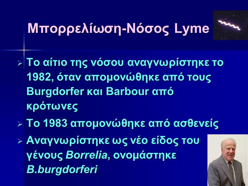 Μπορρελίωση-Νόσος Lyme  Το αίτιο της νόσου αναγνωρίστηκε το 1982, όταν απομονώθηκε από τους Burgdorfer και Barbour από κρότωνες  Το 1983 απομονώθηκε