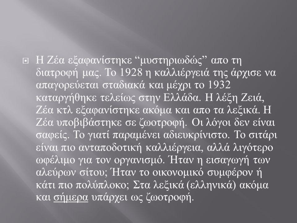 """ Η Ζέα εξαφανίστηκε """" μυστηριωδώς """" απο τη διατροφή μας. Το 1928 η καλλιέργειά της άρχισε να απαγορεύεται σταδιακά και μέχρι το 1932 καταργήθηκε τελε"""