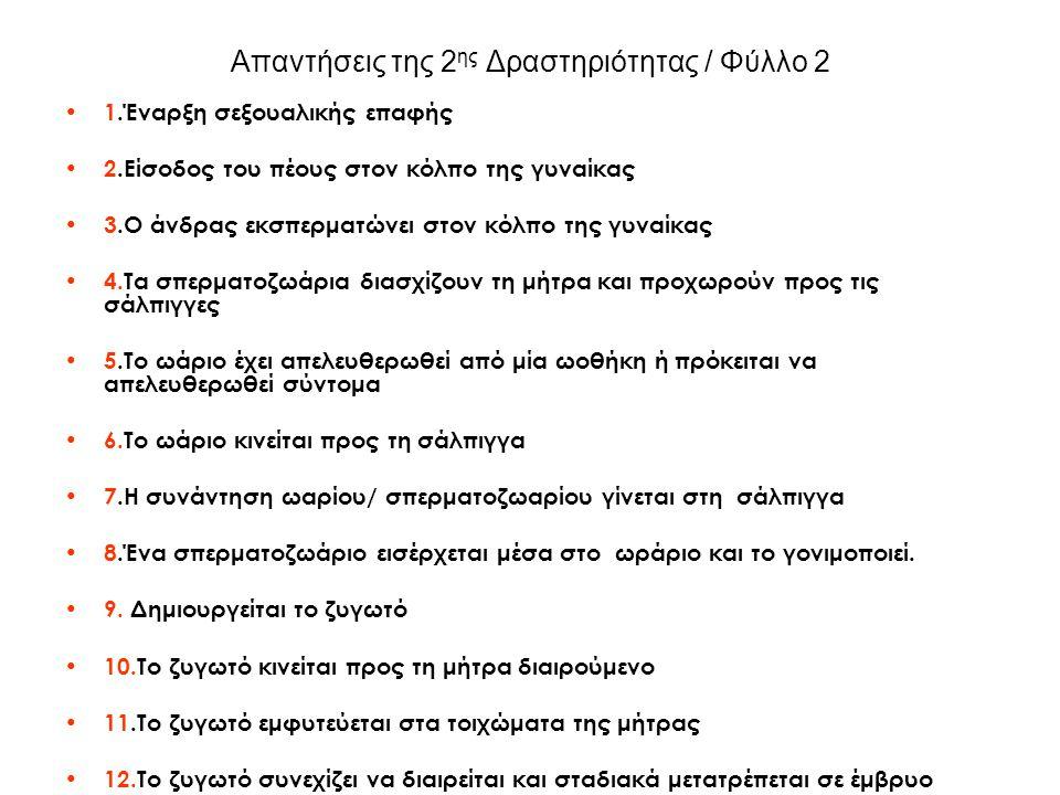 Απαντήσεις της 3 ης Δραστηριότητας/ 2 ο Φύλλο 1.