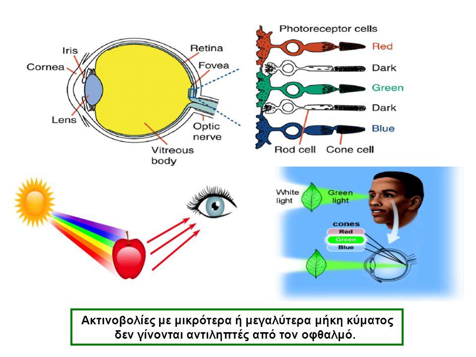 Ακτινοβολίες με μικρότερα ή μεγαλύτερα μήκη κύματος δεν γίνονται αντιληπτές από τον οφθαλμό. ΔΗΛΑΔΗ: