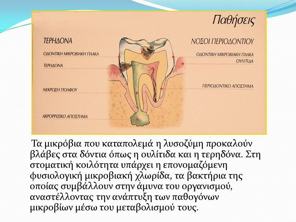 Τα μικρόβια που καταπολεμά η λυσοζύμη προκαλούν βλάβες στα δόντια όπως η ουλίτιδα και η τερηδόνα. Στη στοματική κοιλότητα υπάρχει η επονομαζόμενη φυσι