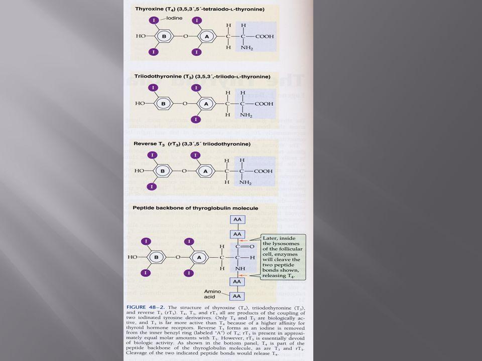  Σε υπερθυρεοειδισμό μπορεί να παρατηρηθεί σχετική βιταμινική ανεπάρκεια