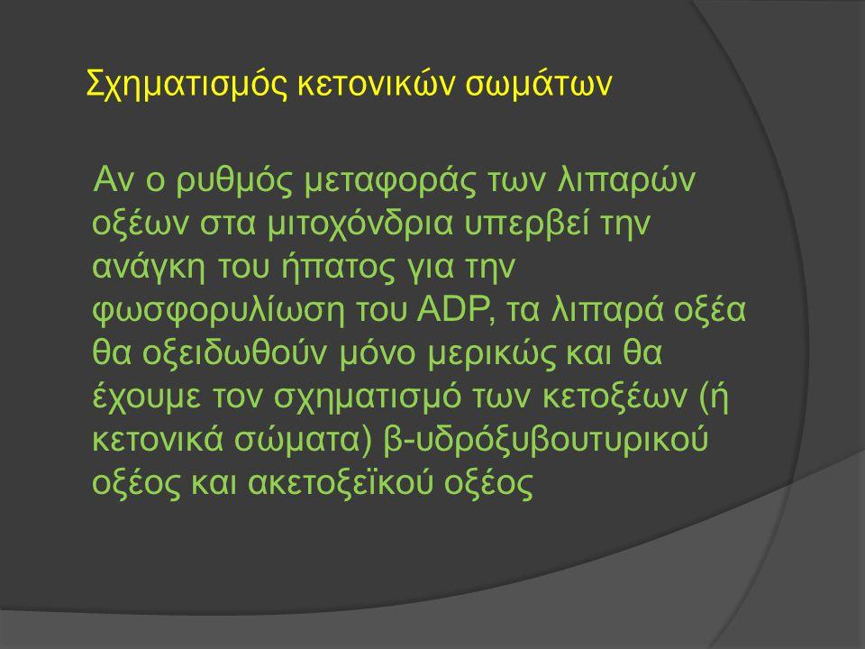 Σχηματισμός κετονικών σωμάτων Αν ο ρυθμός μεταφοράς των λιπαρών οξέων στα μιτοχόνδρια υπερβεί την ανάγκη του ήπατος για την φωσφορυλίωση του ADP, τα λ