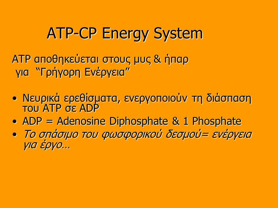 ATP-CP Energy System ATP αποθηκεύεται στους μυς & ήπαρ για Γρήγορη Ενέργεια για Γρήγορη Ενέργεια Νευρικά ερεθίσματα, ενεργοποιούν τη διάσπαση του ATP σε ADPΝευρικά ερεθίσματα, ενεργοποιούν τη διάσπαση του ATP σε ADP ADP = Adenosine Diphosphate & 1 PhosphateADP = Adenosine Diphosphate & 1 Phosphate Το σπάσιμο του φωσφορικού δεσμού= ενέργεια για έργο…Το σπάσιμο του φωσφορικού δεσμού= ενέργεια για έργο…