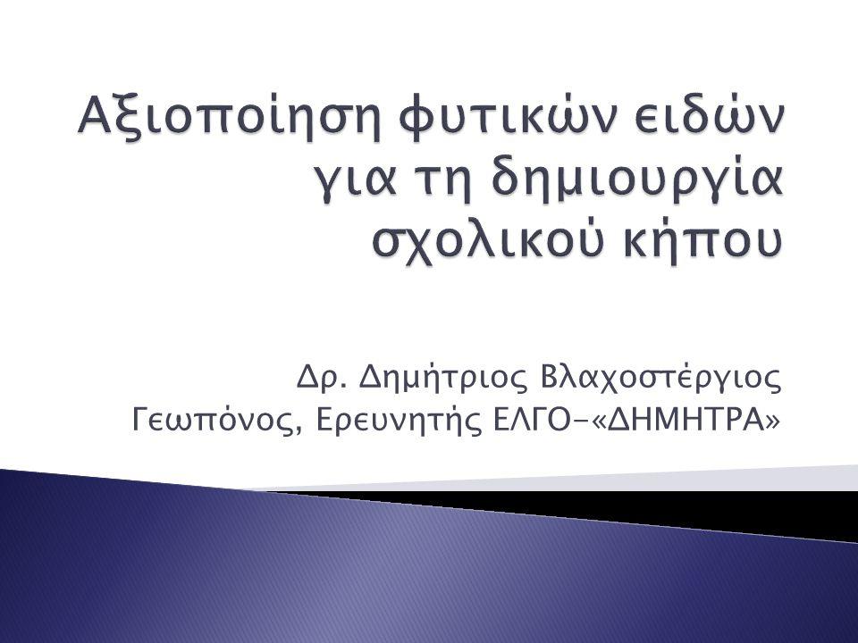 Δρ. Δημήτριος Βλαχοστέργιος Γεωπόνος, Ερευνητής ΕΛΓΟ-«ΔΗΜΗΤΡΑ»