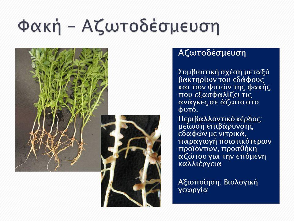 Αζωτοδέσμευση Συμβιωτική σχέση μεταξύ βακτηρίων του εδάφους και των φυτών της φακής που εξασφαλίζει τις ανάγκες σε άζωτο στο φυτό. Περιβαλλοντικό κέρδ