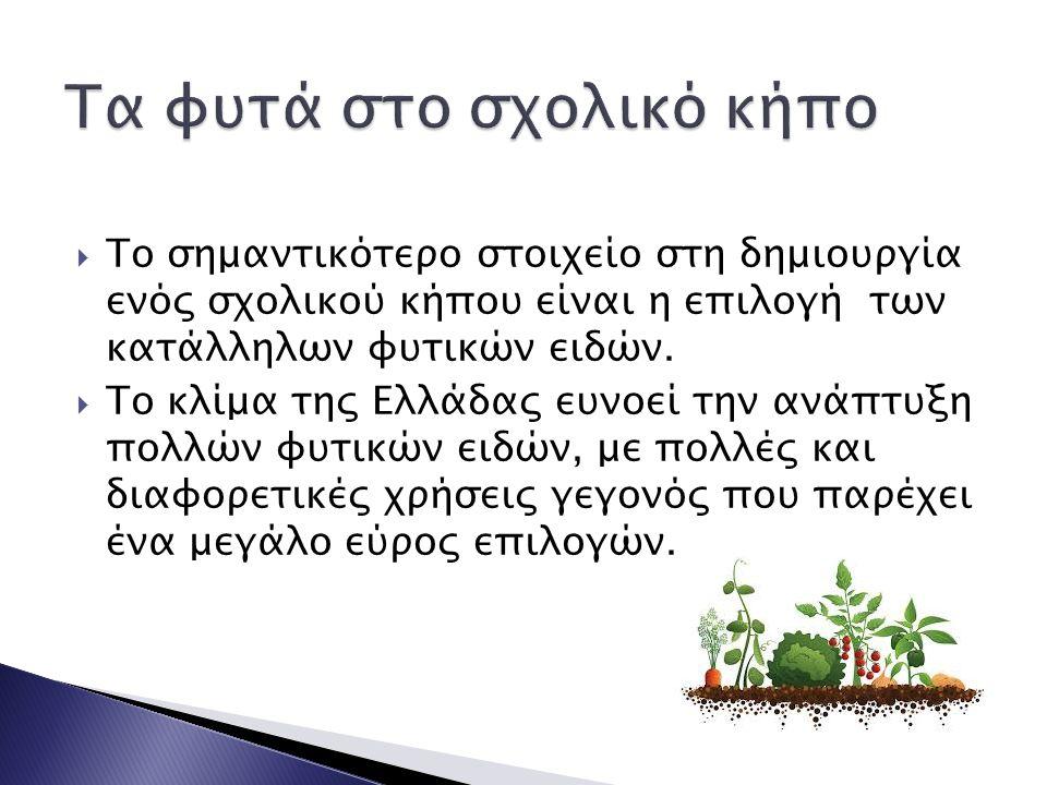  Το σημαντικότερο στοιχείο στη δημιουργία ενός σχολικού κήπου είναι η επιλογή των κατάλληλων φυτικών ειδών.  Το κλίμα της Ελλάδας ευνοεί την ανάπτυξ
