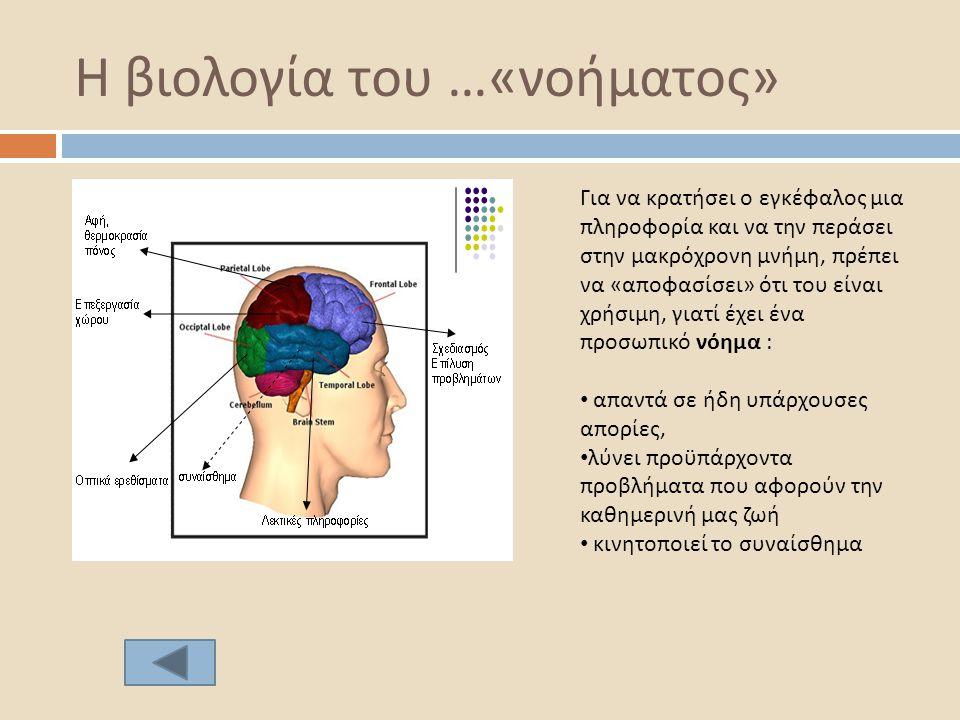 Η βιολογία του …« νοήματος » Για να κρατήσει ο εγκέφαλος μια πληροφορία και να την περάσει στην μακρόχρονη μνήμη, πρέπει να «αποφασίσει» ότι του είναι