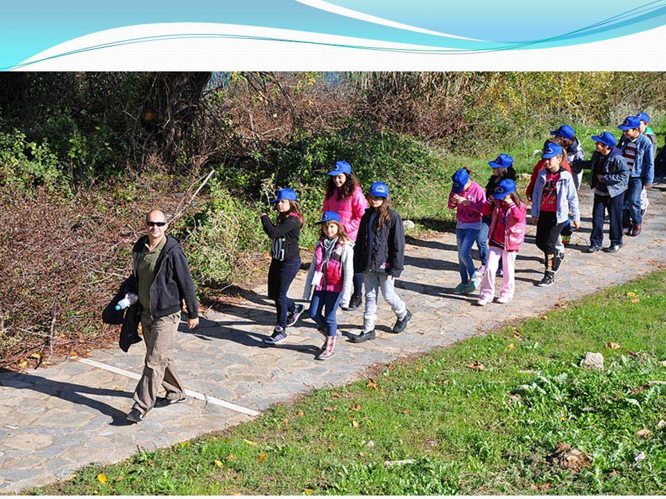 «Υδάτινη ενέργεια –νεροτριβές –νερόμυλοι» Το πρόγραμμα αυτό υλοποιείται κυρίως στο χωριό Κεφαλόβρυσο κοντά στην Ελασσόνα. Οι μαθητές επισκέπτονται την