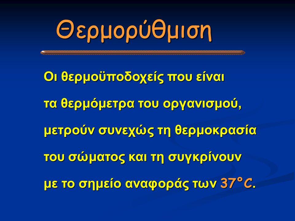 Οι θερμοϋποδοχείς που είναι τα θερμόμετρα του οργανισμού, μετρούν συνεχώς τη θερμοκρασία του σώματος και τη συγκρίνουν με το σημείο αναφοράς των 37°C.
