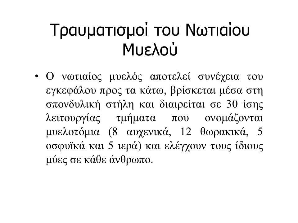 Βιβλιογραφία Κοκαρίδας, Δ., & Πέρκος, Σ.(2005). Η καλαθοσφαίριση με αμαξίδιο.