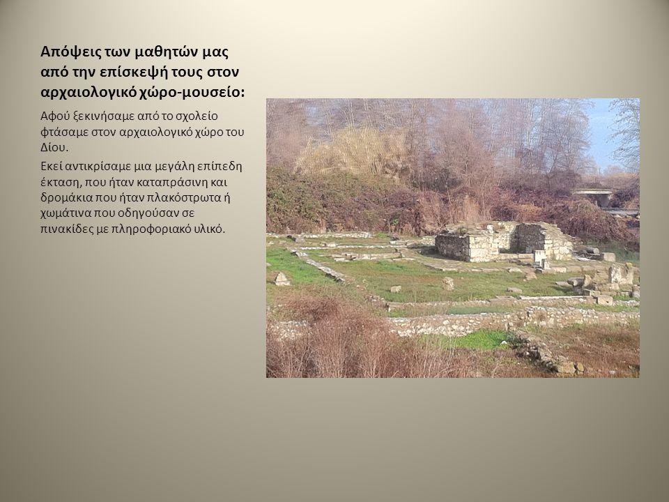 Απόψεις των μαθητών μας από την επίσκεψή τους στον αρχαιολογικό χώρο-μουσείο: Αφού ξεκινήσαμε από το σχολείο φτάσαμε στον αρχαιολογικό χώρο του Δίου.