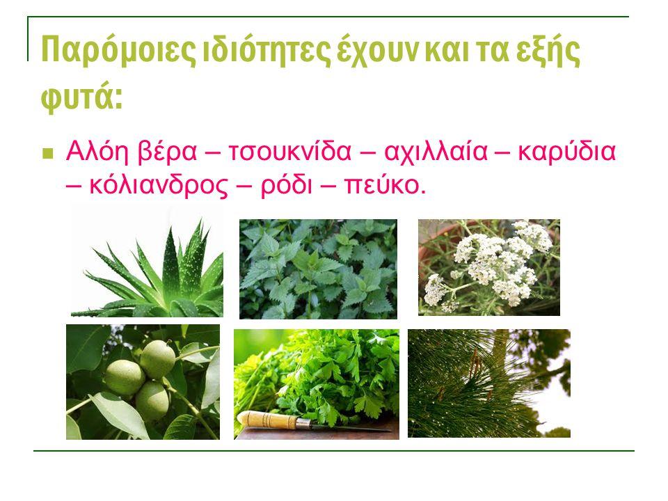 Παρόμοιες ιδιότητες έχουν και τα εξής φυτά: Αλόη βέρα – τσουκνίδα – αχιλλαία – καρύδια – κόλιανδρος – ρόδι – πεύκο.