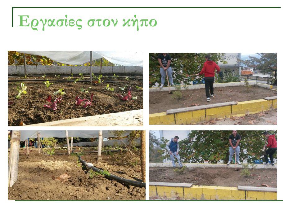 Εργασίες στον κήπο