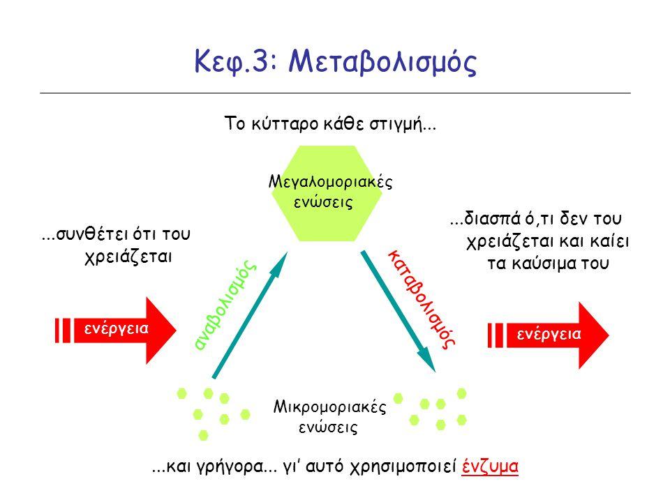 Κεφ.3: Μεταβολισμός Μικρομοριακές ενώσεις Μεγαλομοριακές ενώσεις αναβολισμός καταβολισμός Το κύτταρο κάθε στιγμή......συνθέτει ότι του χρειάζεται...δι