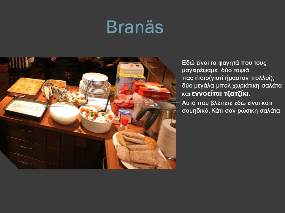 Branäs Εδώ είναι τα φαγητά που τους μαγειρέψαμε: δύο ταψιά παστίτσιο(γιατί ήμασταν πολλοί), δύο μεγάλα μπολ χωριάτικη σαλάτα και εννοείται τζατζίκι.