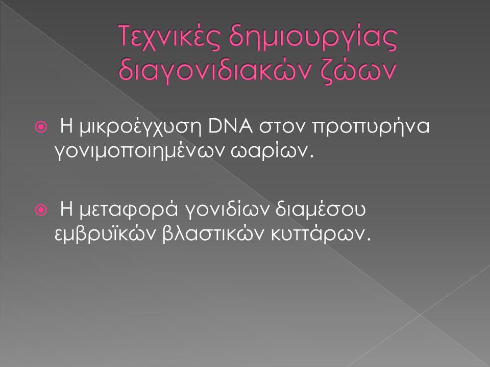  Η μικροέγχυση DNA στον προπυρήνα γονιμοποιημένων ωαρίων.  Η μεταφορά γονιδίων διαμέσου εμβρυϊκών βλαστικών κυττάρων.