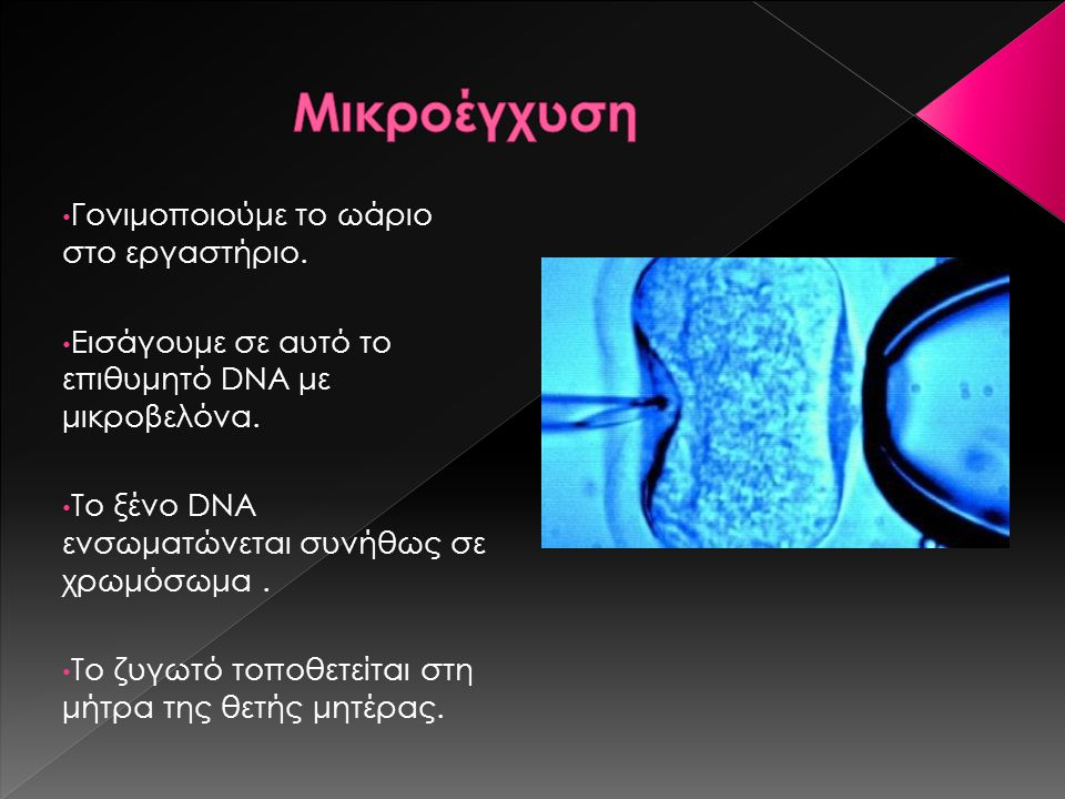Γονιμοποιούμε το ωάριο στο εργαστήριο. Εισάγουμε σε αυτό το επιθυμητό DNA με μικροβελόνα. Το ξένο DNA ενσωματώνεται συνήθως σε χρωμόσωμα. Το ζυγωτό το