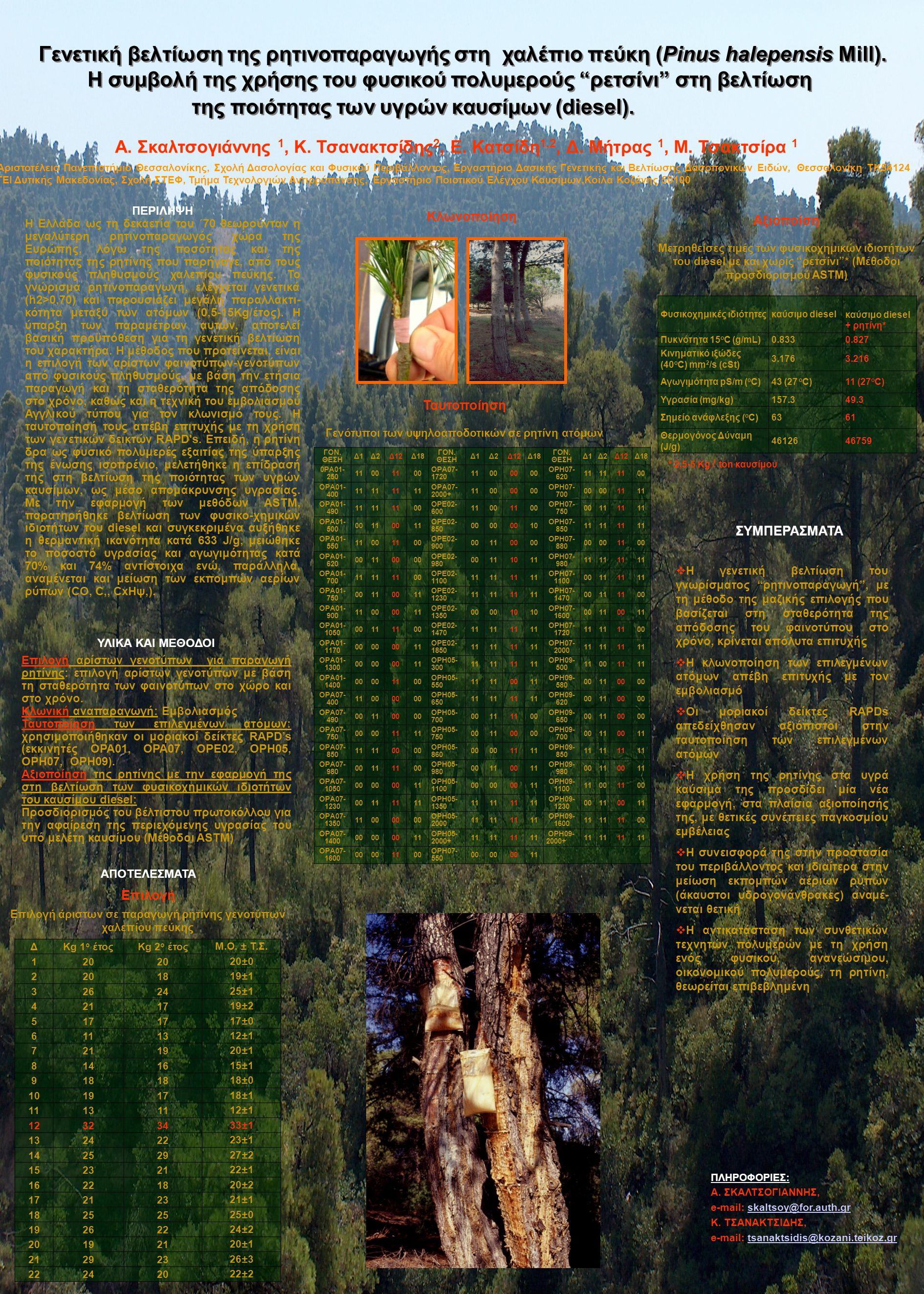 Γενετική βελτίωση της ρητινοπαραγωγής στη χαλέπιο πεύκη (Pinus halepensis Mill).