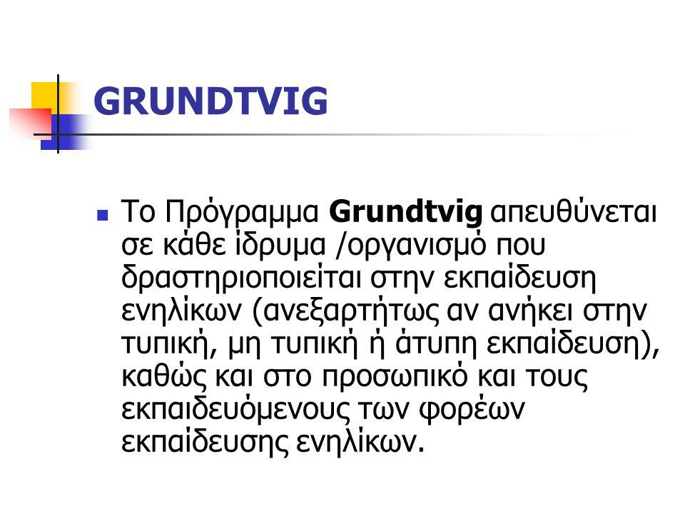 GRUNDTVIG Το Πρόγραμμα Grundtvig απευθύνεται σε κάθε ίδρυμα /οργανισμό που δραστηριοποιείται στην εκπαίδευση ενηλίκων (ανεξαρτήτως αν ανήκει στην τυπική, μη τυπική ή άτυπη εκπαίδευση), καθώς και στο προσωπικό και τους εκπαιδευόμενους των φορέων εκπαίδευσης ενηλίκων.