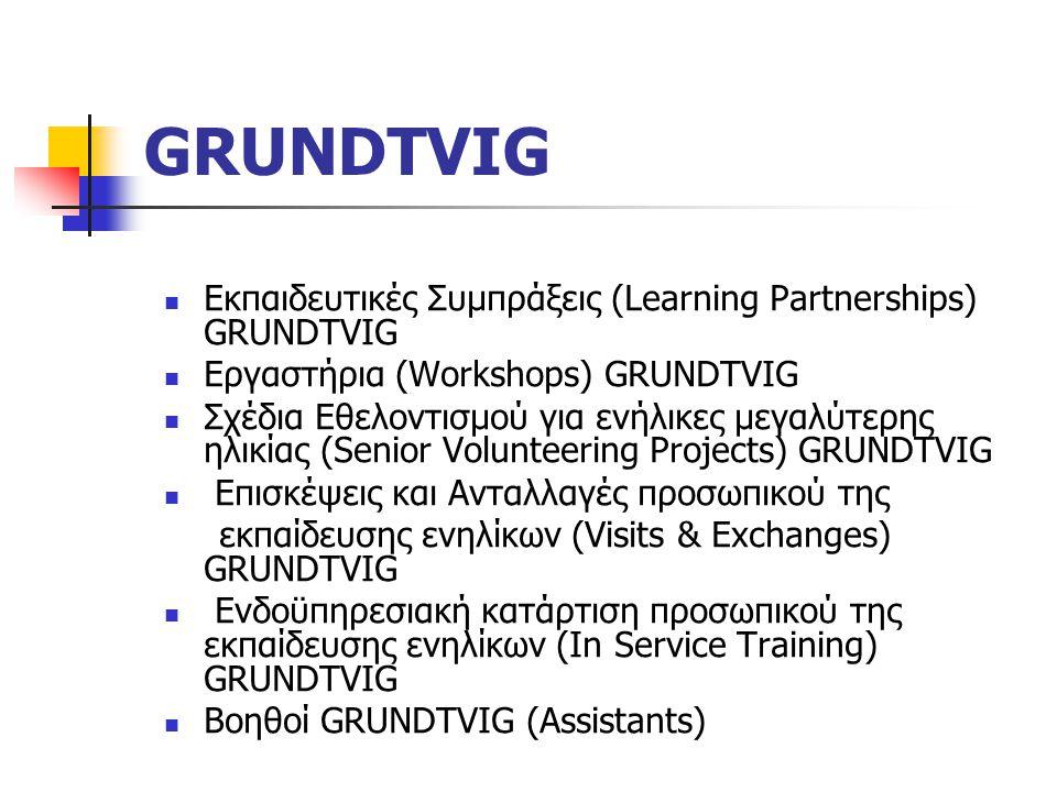 GRUNDTVIG Εκπαιδευτικές Συμπράξεις (Learning Partnerships) GRUNDTVIG Εργαστήρια (Workshops) GRUNDTVIG Σχέδια Εθελοντισμού για ενήλικες μεγαλύτερης ηλικίας (Senior Volunteering Projects) GRUNDTVIG Επισκέψεις και Ανταλλαγές προσωπικού της εκπαίδευσης ενηλίκων (Visits & Exchanges) GRUNDTVIG Ενδοϋπηρεσιακή κατάρτιση προσωπικού της εκπαίδευσης ενηλίκων (In Service Training) GRUNDTVIG Βοηθοί GRUNDTVIG (Assistants)
