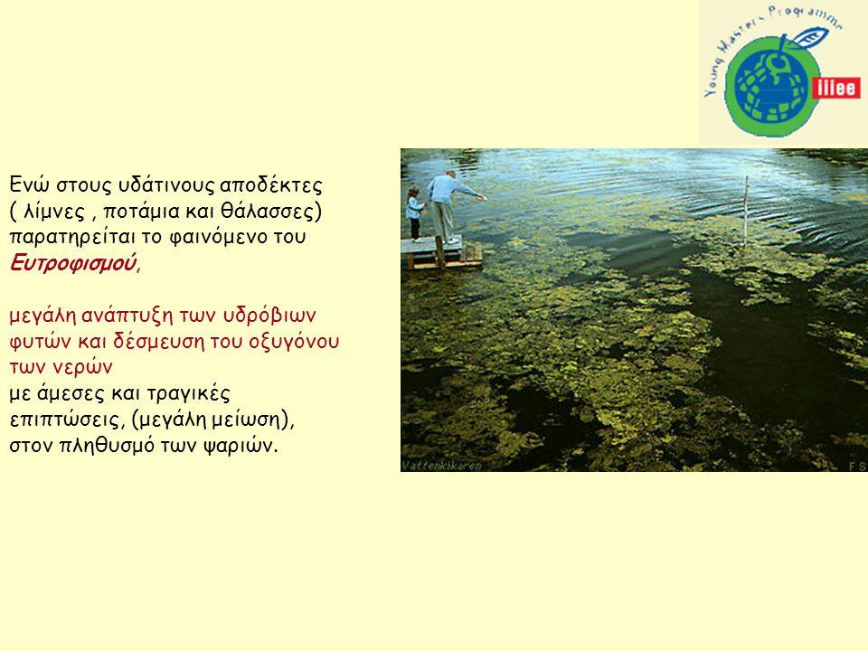 Ενώ στους υδάτινους αποδέκτες ( λίμνες, ποτάμια και θάλασσες) παρατηρείται το φαινόμενο του Ευτροφισμού, μεγάλη ανάπτυξη των υδρόβιων φυτών και δέσμευση του οξυγόνου των νερών με άμεσες και τραγικές επιπτώσεις, (μεγάλη μείωση), στον πληθυσμό των ψαριών.